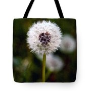 Waiting For A Breeze Tote Bag