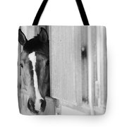 Waiting For A Ride Black And White Tote Bag