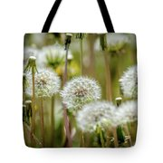 Waiting For A Spring Breeze Tote Bag