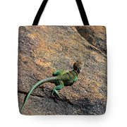 Waiting For Bugs Tote Bag