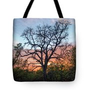 Waiting For Life Tote Bag