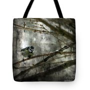 Waiting For Springtime Tote Bag