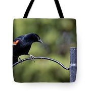 Waiting For Suet Tote Bag