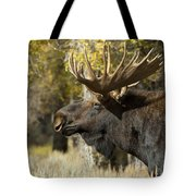 Waiting For The Challengers Tote Bag by Sandra Bronstein