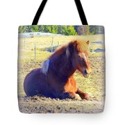 Waiting For The Green Grass To Grow Around My Bed  Tote Bag