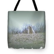 Waiting For The Shepherd Tote Bag