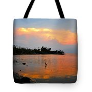 Waiting In The Gulf Tote Bag