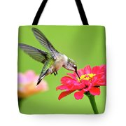 Waiting In The Wings Hummingbird Square Tote Bag