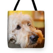 Waiting Is Hard Work Tote Bag