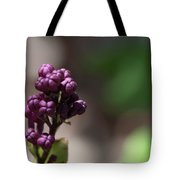 Waiting To Blossom Tote Bag