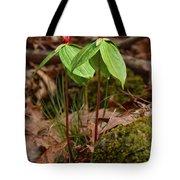 Wake Robin Trillium Tote Bag