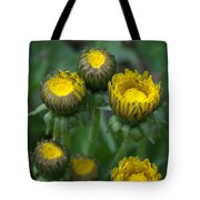 Wake Up Dandelions Tote Bag
