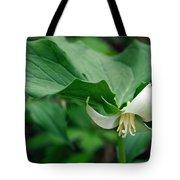 Wakerobin Tote Bag