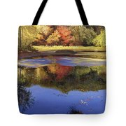 Walden Pond II Tote Bag