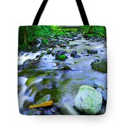 Walk Bridge Over Moffit Creek Tote Bag