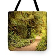 Walk Into The Forest Tote Bag by Carol Groenen