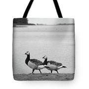 Walk On The Beach. Barnacle Goose Tote Bag
