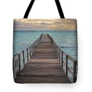 Walk On The Water Tote Bag