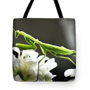 Walkin Tall On Silk Tote Bag