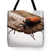 Walking Beetle Tote Bag