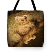 Walking By The Pond Tote Bag