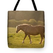 Walking In The Sun Tote Bag