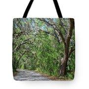 Walking In The Woods Of Amelia Island Tote Bag