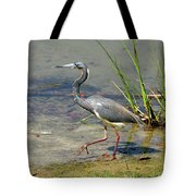 Walking On The Edge Tote Bag