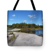 Walking On The Whale's Back Tote Bag