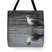 Walking On Water 4850 Tote Bag