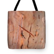 Walking Stick And Pheasant Feather Tote Bag