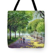 Walking The Mall Tote Bag
