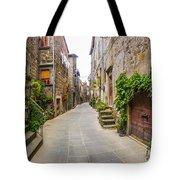 Walking Through Old Europe Tote Bag