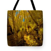 Walking With Autumn Tote Bag