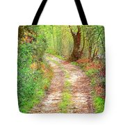 Walkway In Secluded Deciduous Forest Tote Bag