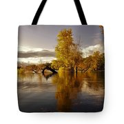 Wall Approved Tote Bag