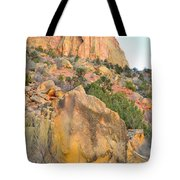Wall Of Color Tote Bag