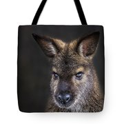 Wallaby Portrait Tote Bag