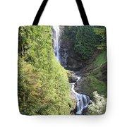 Wallace Falls Tote Bag