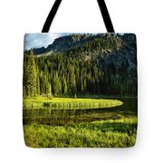 Wallowas - No. 8 Tote Bag