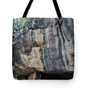 Walnut Canyon National Monument Portrait Tote Bag