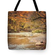 Walnut Creek In Autumn Tote Bag