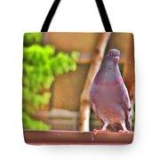 Walter Pigeon Tote Bag