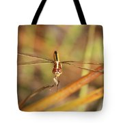 Wandering Glider Dragonfly Tote Bag