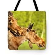 Wandering In The Forest Tote Bag