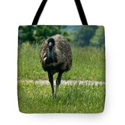 Wanding Ostrich Tote Bag