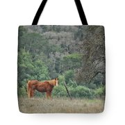 Wanna Ride Little Lady Tote Bag