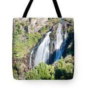 Waratah Falls Tasmania Tote Bag