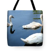 Ward Tote Bag