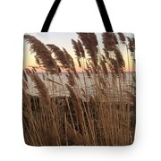 Warm Breeze Tote Bag